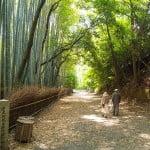 Kyoto – Japan