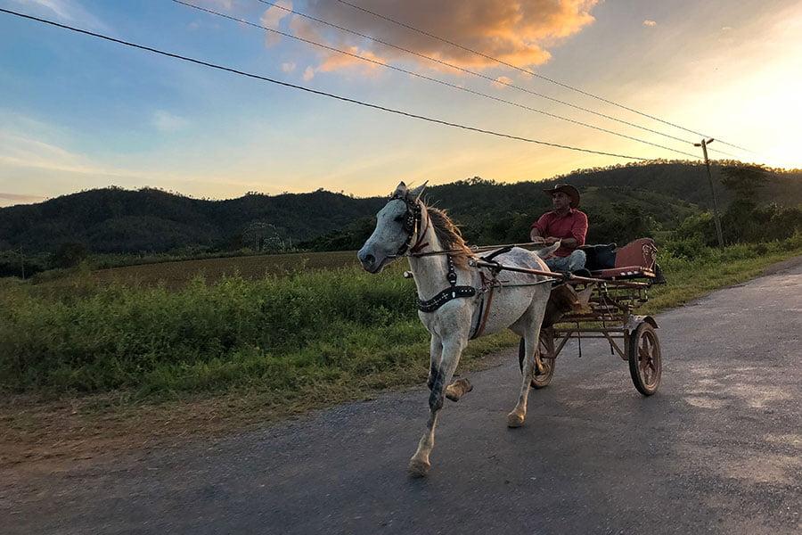 cuba-vinales-horse-road